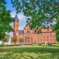 Berliner Rathaus umgeben von Bäumen