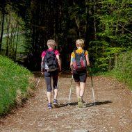 Zwei Frauen wandern durch einen Wald