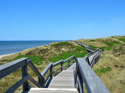 Holzsteg zwischen Dünen auf Sylt an der Nordsee