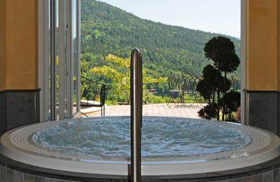 Whirlpool mit Ausblick auf den Bayerischen Wald im Burghotel Sterr