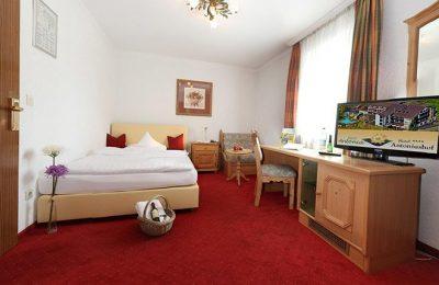 Wohnraum im Zimmer Heimatgefühl - 16 m²