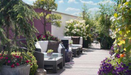 Pflanzen und Sitzgelegenheiten auf der Dachterrasse