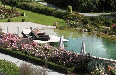 Übersicht vom Naturbadeweiher im Garten