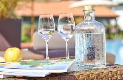 Wassergläser im Garten in der Nahaufnahme