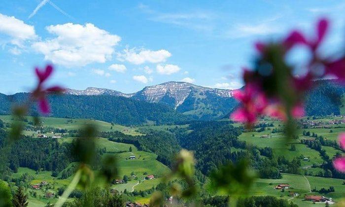 Grüne Wiesen und Berglandschaft in Bayern