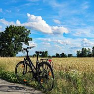 Fahrrad vor Feld am Niederrhein