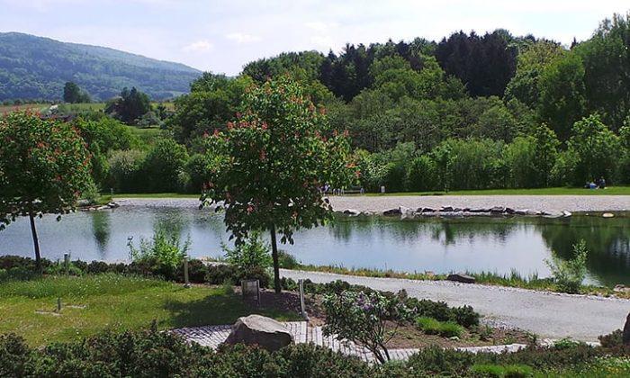 Kurpark mit See und zahlreichen Pflanzen