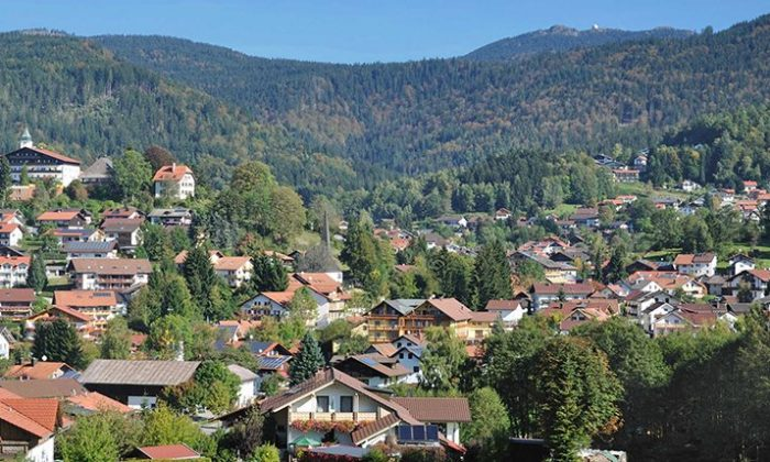 Überblick über Dorf in der Natur des Bayerwaldes