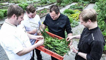 Küchenteam mit frischem Gemüse