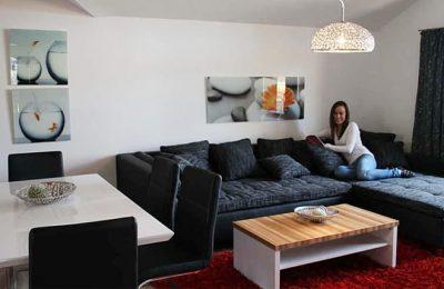 Wohnzimmer in der Ferienwohnung Typ a 2