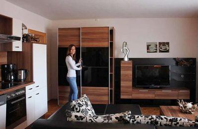 Wohnraum in der Ferienwohnung Typ a 2