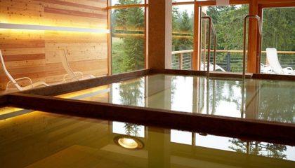 Becken zur Abkühlung im Wellnessbereich