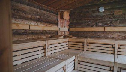 Blick auf die Holzsauna