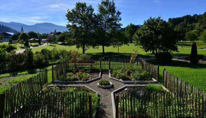 Überblick über den Kräutergarten