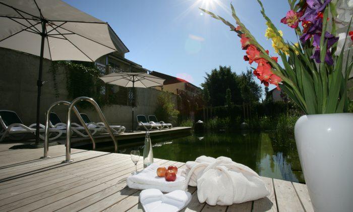 Garten mit Naturschwimmbad bei sonnigem Wetter
