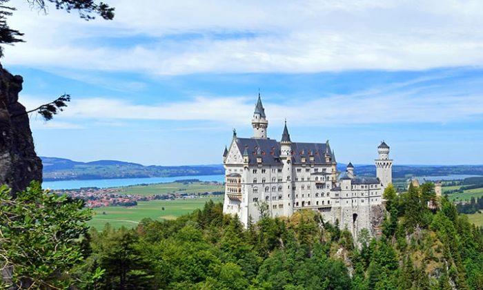 Blick auf das Schloss und umgebenden Wälder