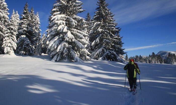 Person wandert durch schneebedeckten Wald