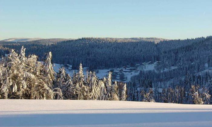 Verschneiter Bayerwald