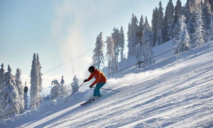 Skifahrer im Bayerwald