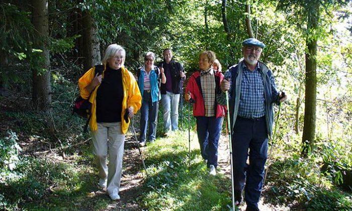 Eine Gruppe wandert im Geiersthal