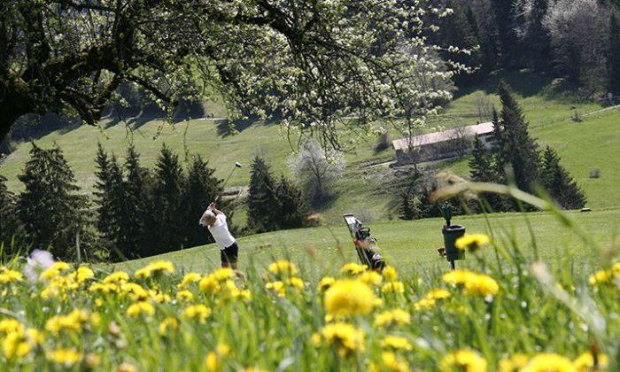 Mann spielt Golf auf blühender Wiese