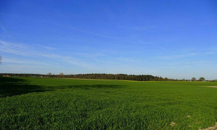 Grüne Landschaft vor blauem Himmel am Niederrhein